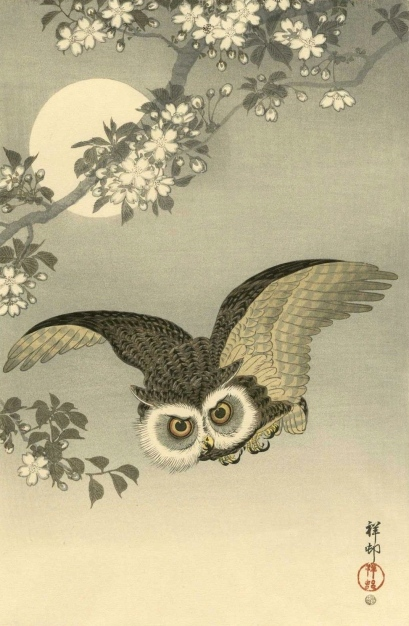 ohara_koson_japanese_woodblock_print___scops_owl___6mm_edition_1_lgw